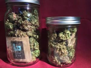 Buds in Jars